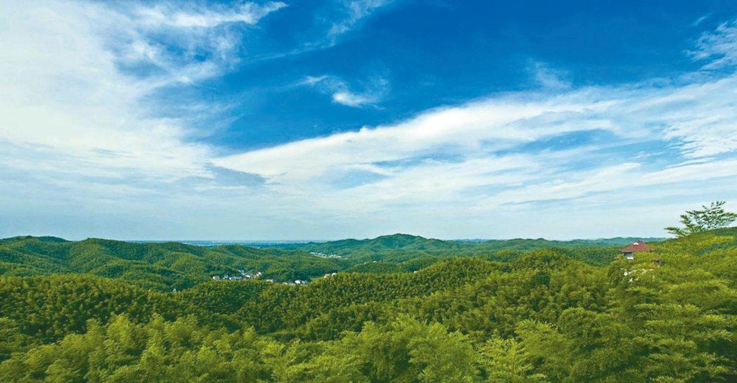 桃花江竹海風景區,「竹」是主題。 圖/本報湖南益陽傳真