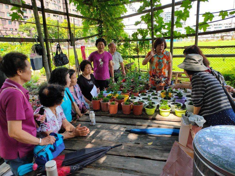 台南市安平區國平社區打造共好、共老的都市桃花源。圖/安平區公所提供