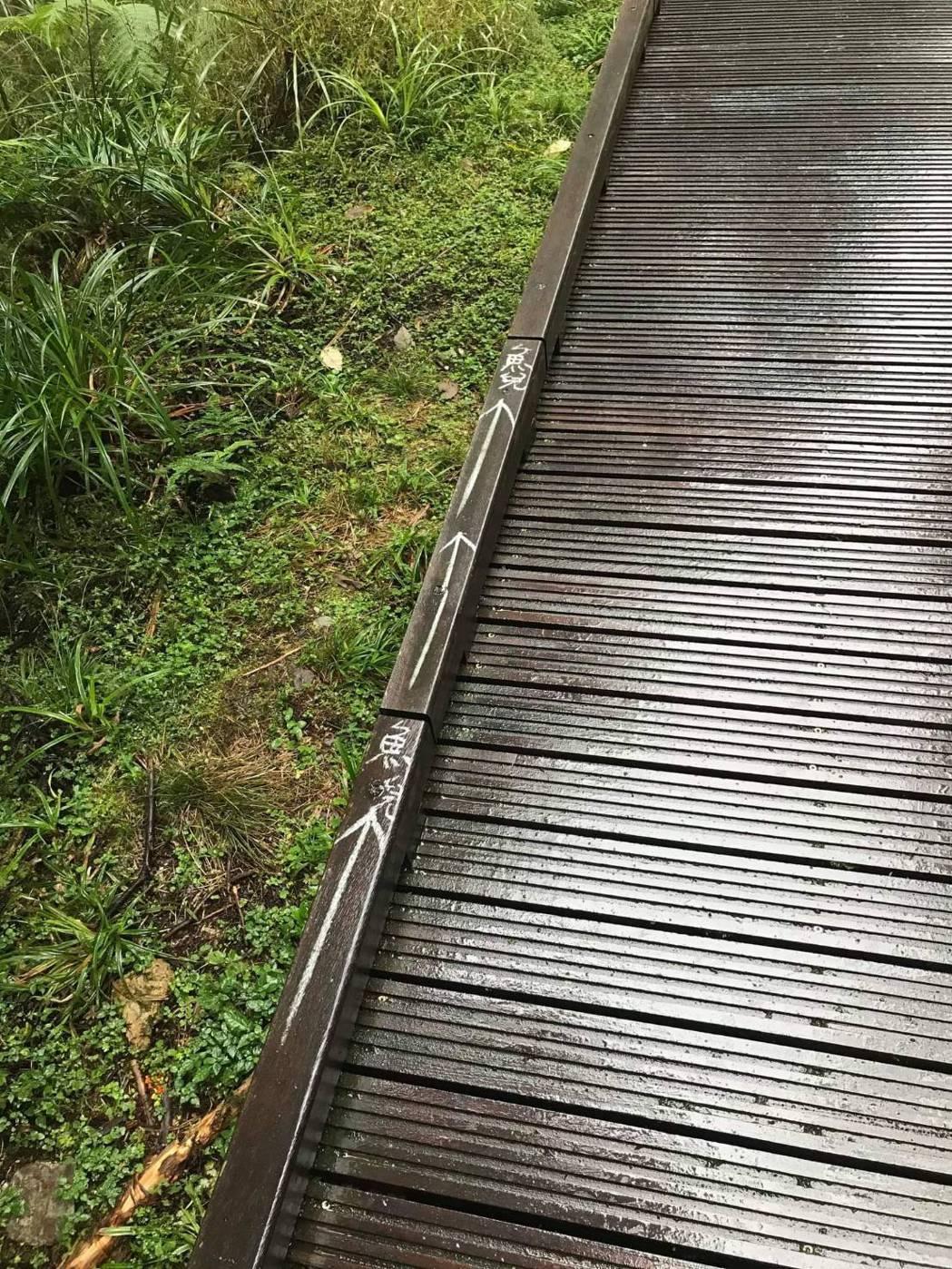 太平山茂興步道被寫上「魚兒」等字樣,園方清查塗鴉共有10處,引起網友痛批「沒公德...