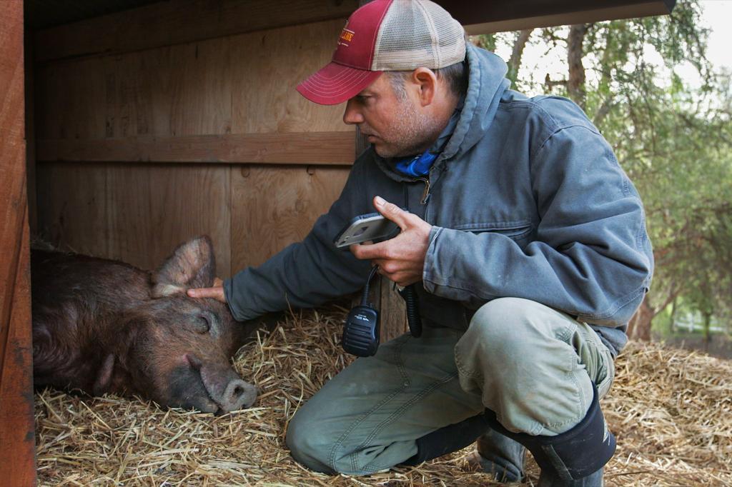 電影《我家有個開心農場》劇照。