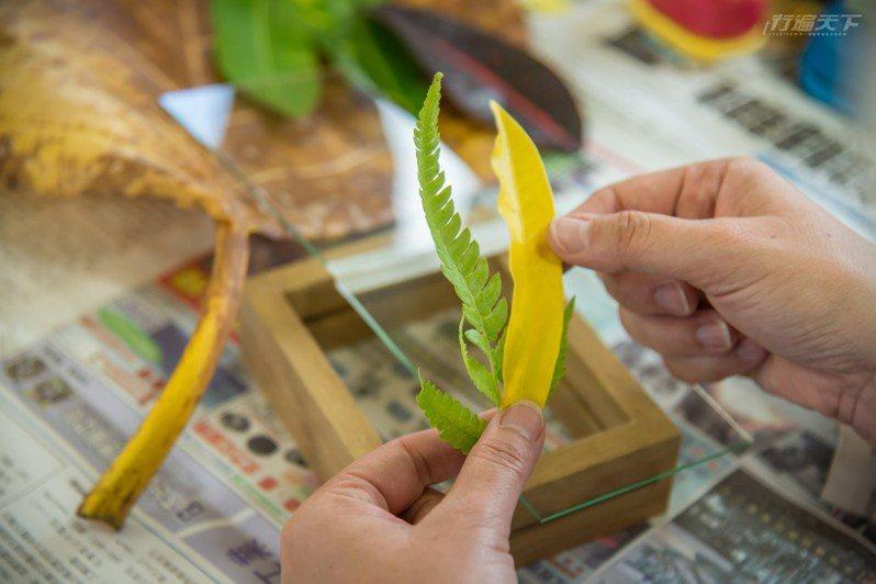 怡園的壓花體驗,發揮創意做出自己的大自然相框。