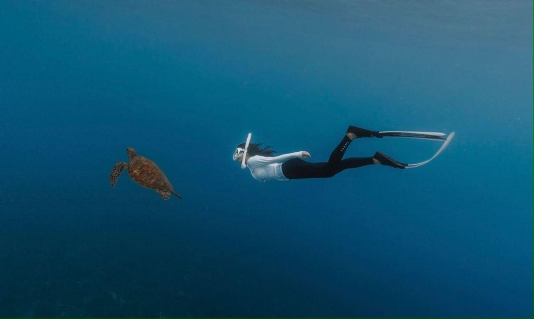 郭書瑤上周到小琉球旅行,潛水與龜同遊喊圓夢。圖/寶拉珍選提供
