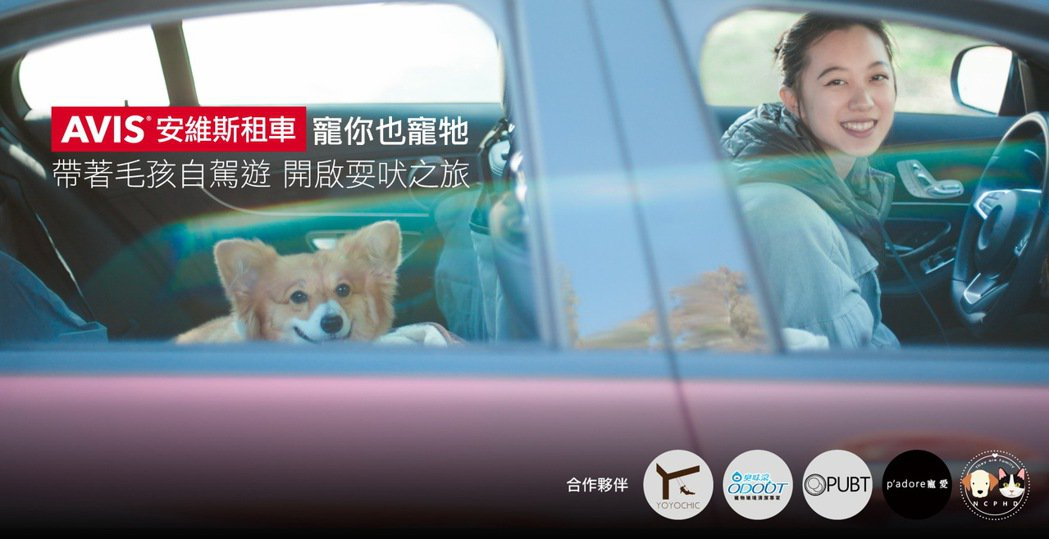 AVIS安維斯租車業界首創「寵你也寵牠」寵物共遊友善專案。 圖/AVIS安維斯租...
