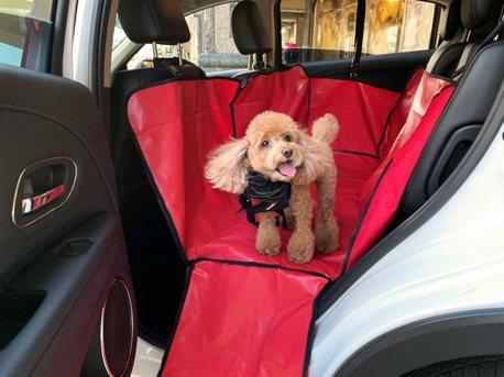 安維斯租車首創寵物共遊友善專案 帶毛小孩旅行一定要租爆!