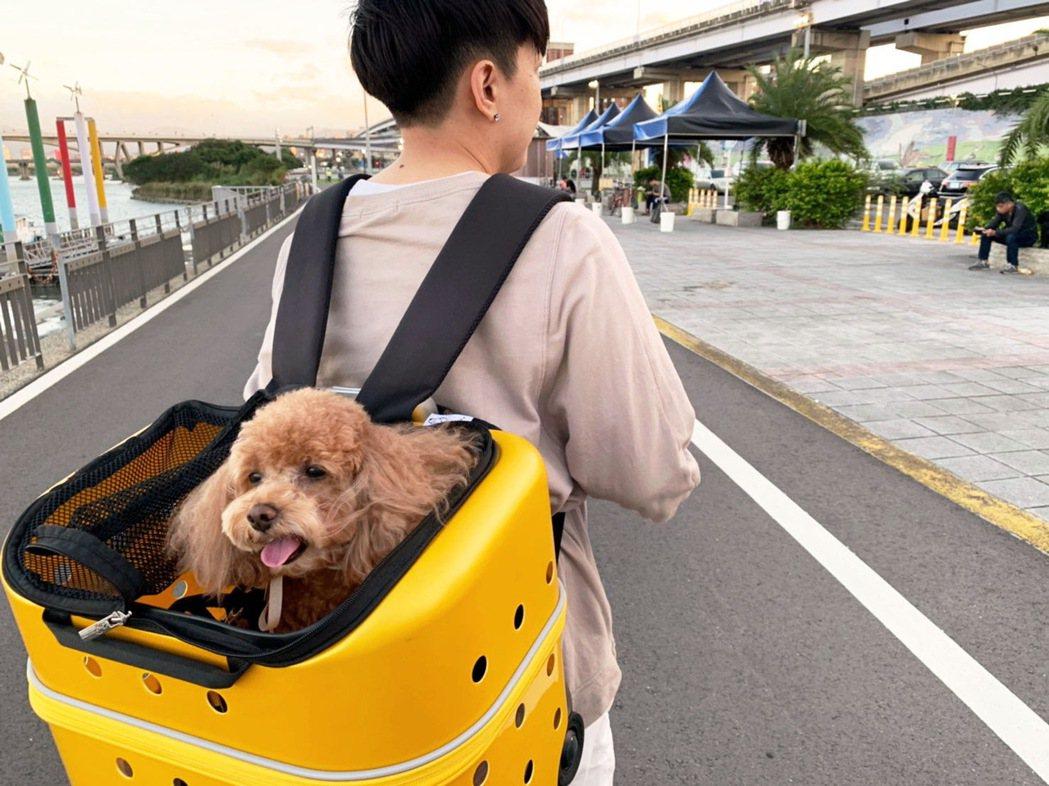 考量到某些旅遊景點或室內有寵物不落地的規定,AVIS也貼心準備了寵物用拉桿箱給2...