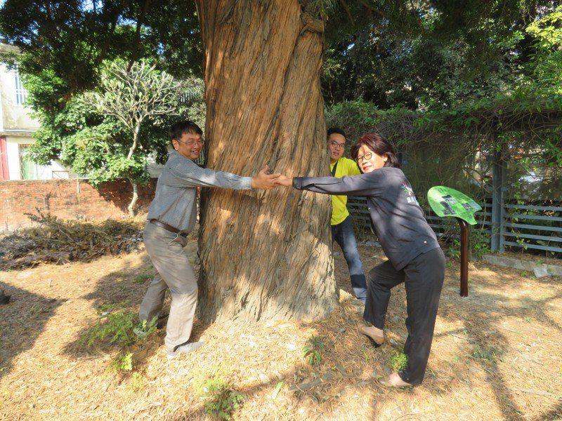 抱樹時觸摸不同構造的樹皮、嗅聞不同樹木的氣味、靜聽輕風吹過樹梢的旋律,這些感受都讓人紓緩放鬆,對健康有益。圖/聯合報系資料照片
