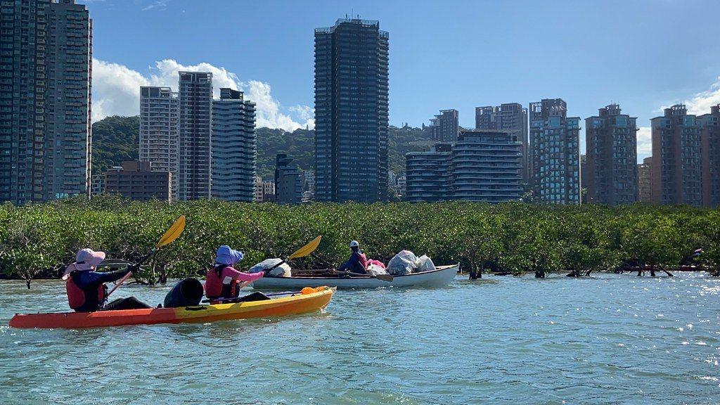 如今,每週固定有20多名志工從竹圍出發,沿著河岸紅樹林撿垃圾。 圖/許祖菱 攝影