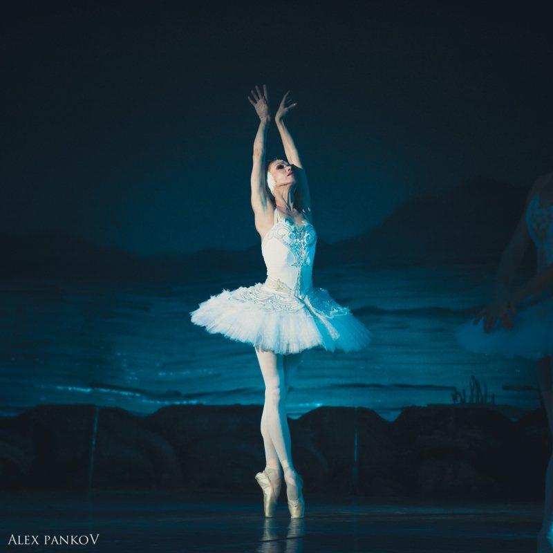 莫斯科古典芭蕾即將完售,北高加開經典舞碼「天鵝湖」。圖/聯合數位文創提供