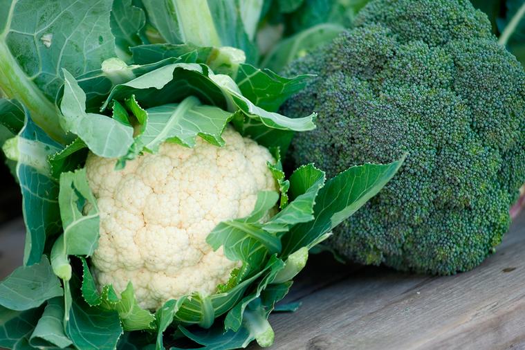 你討厭綠花椰菜的理由 圖/ingimage