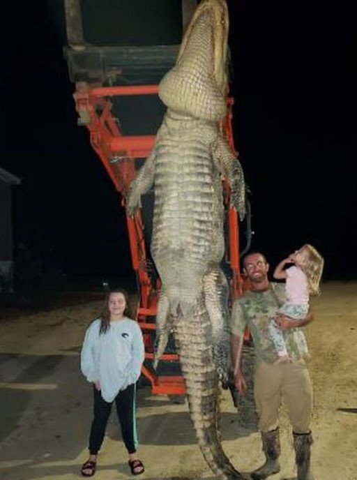 美國佛羅里達州漁夫上個月中捕獲重量473公斤、身長422公分的鱷魚。圖/取自New York Post