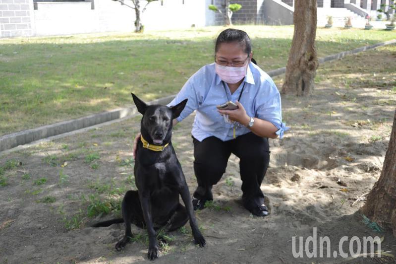 中信金融管理院設有校犬隊,守護師生安全。記者鄭惠仁/攝影