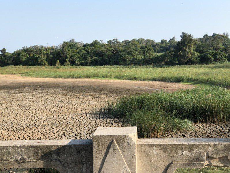 金門上月只下0.5毫米的雨量,有跟沒有一樣,讓不少湖庫都出現乾涸見底。記者蔡家蓁/攝影