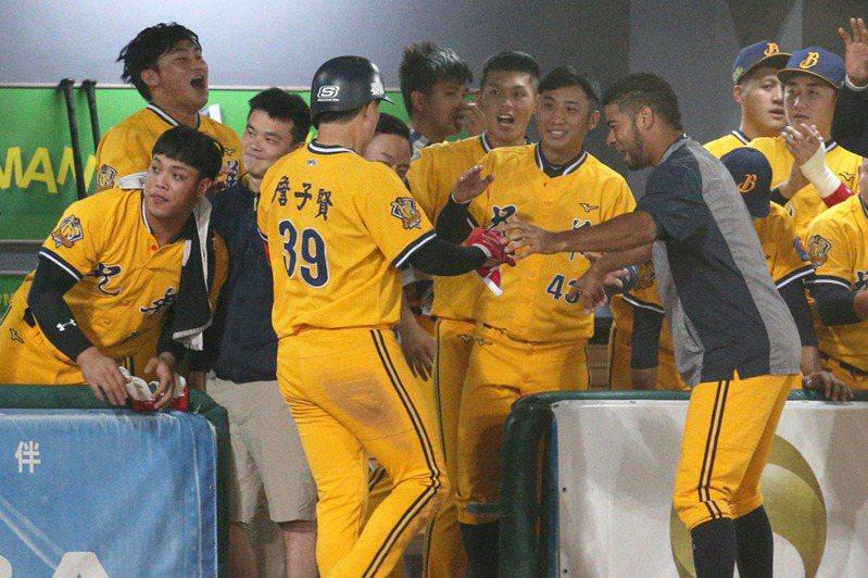 兄弟距離奪冠只差一步,板凳區仍有7名球員尚未出賽。 記者劉學聖/攝影
