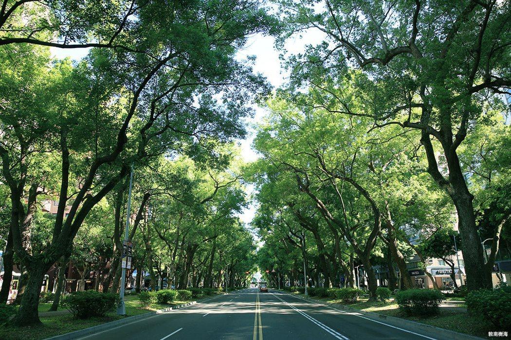 敦化樹海林蔭總長4.6公里,70米恆久棟距對位台北市心最精華的大安地段。 圖/海...