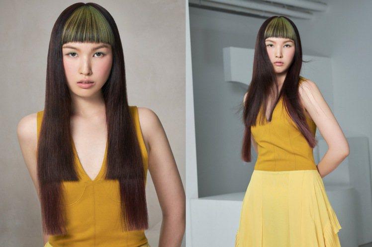 長髮的區塊染,可以針對單一部位染髮。圖/AVEDA提供