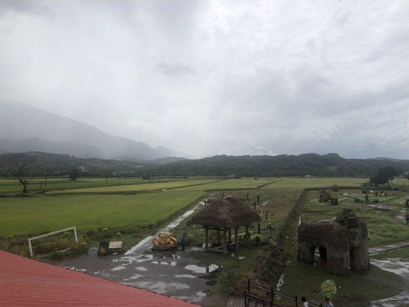 花蓮米倉富里鄉正值二期稻收割期,但因颱風帶來間歇雨勢,今天暫停割稻。圖/張素華提供
