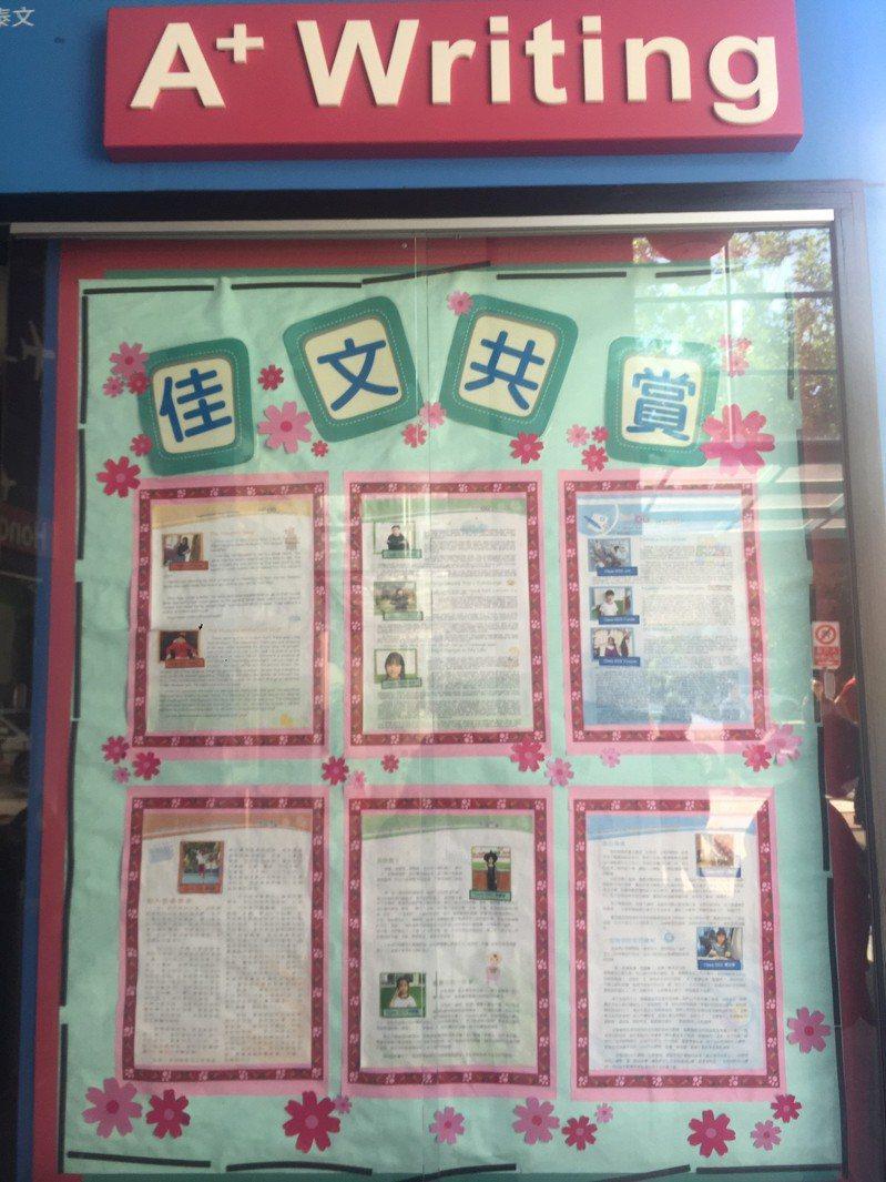 北市新民國小學生獲桂冠獎與妙筆獎的作品,會放在公告欄或教刊。圖/聯合報教育事業部提供