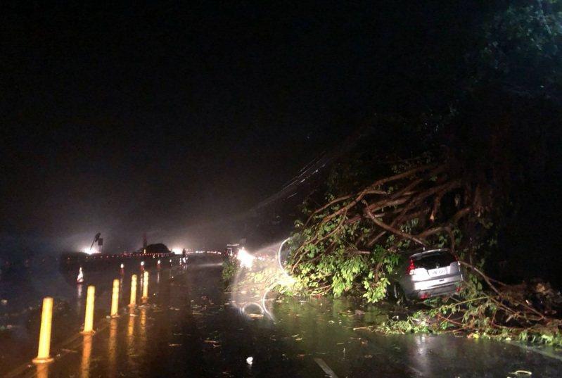 受閃電颱風影響,台東南迴地區雨勢不斷,晚間7點多南迴公路400.5公里處,南下路段邊坡1棵路樹突然倒塌,壓損一輛停放路邊的自小客車,所幸車上無人。圖/大武警分局提供