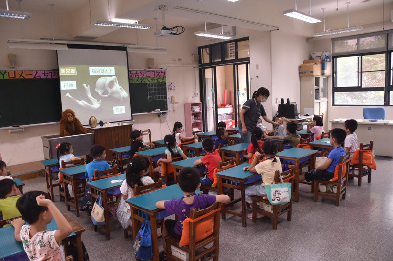 新竹市立動物園深入校園試辦生命教育巡迴講座,帶著鴕鳥蛋、鴯鶓蛋及動物骨頭等標本讓學生零距離觸摸,加深保育動物觀念。圖/市府提供