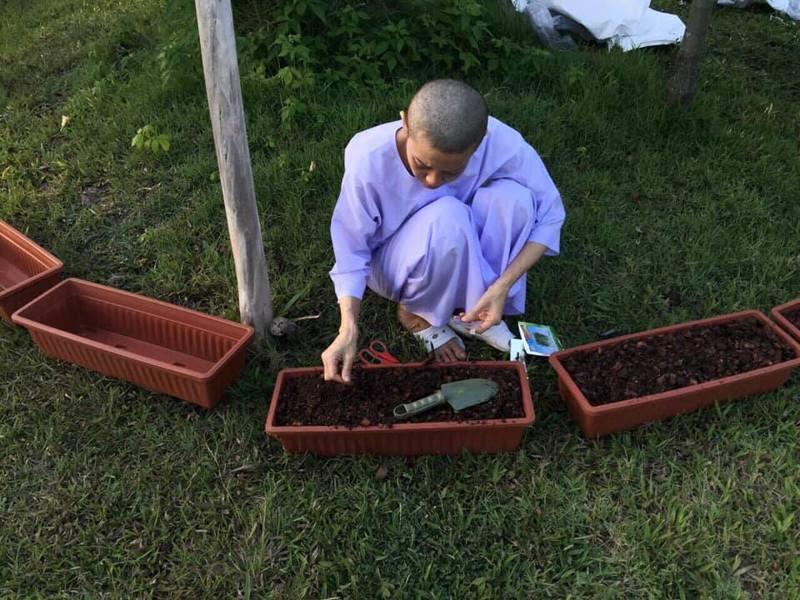 種菜是西拉米的生活要務之一。(取自臉書)