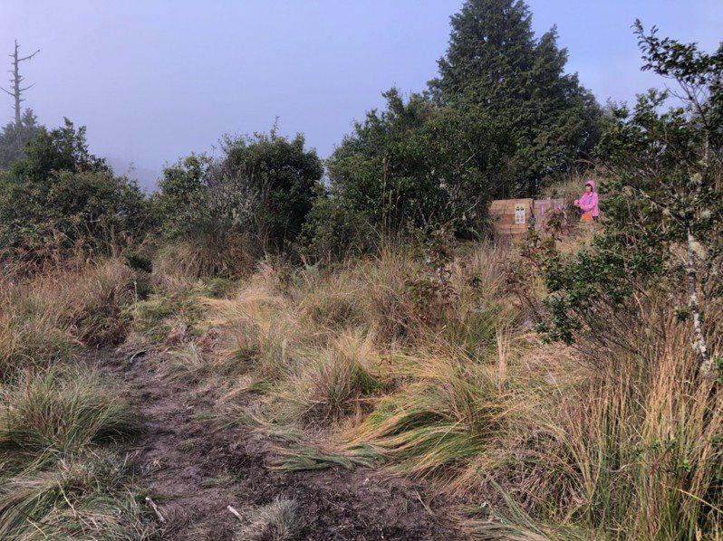 加羅湖的「貓坑」,距離紮營地點遠,民眾要穿越重重泥濘,才能使用。圖/陳廉臻提供