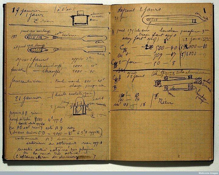 居禮夫人120年前的筆記本曝光,諾貝爾基金會卻表示仍有強烈的輻射線。圖翻攝自推特
