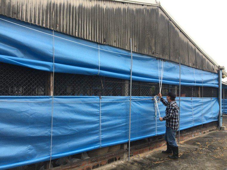 台南市農業局提醒加強防範禽流感。圖/農業局提供
