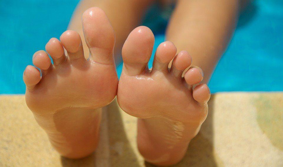 指甲可保護指尖及指骨,增加觸覺敏銳度、幫助撿起微小的物體、提供搔抓功能,完好的指...