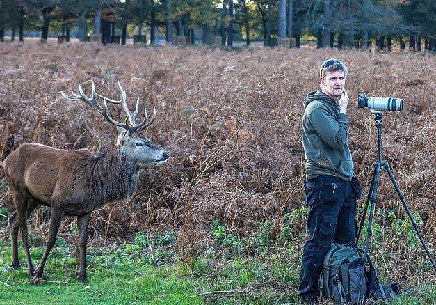 照片中的男子從頭到尾都沒注意到身後曾經出現過一頭鹿。克拉克表示:「他從未意識到自己錯過了什麼」。Solent News/Roger Clark