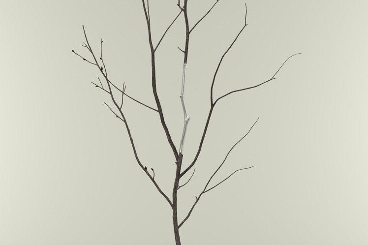 ISSEY MIYAKE以冰雪樺木的輪廓打造樹枝形貌的ICY BRICH錫手環。...