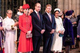 威廉王子隱瞞得新冠肺炎 哈利與梅根氣炸!