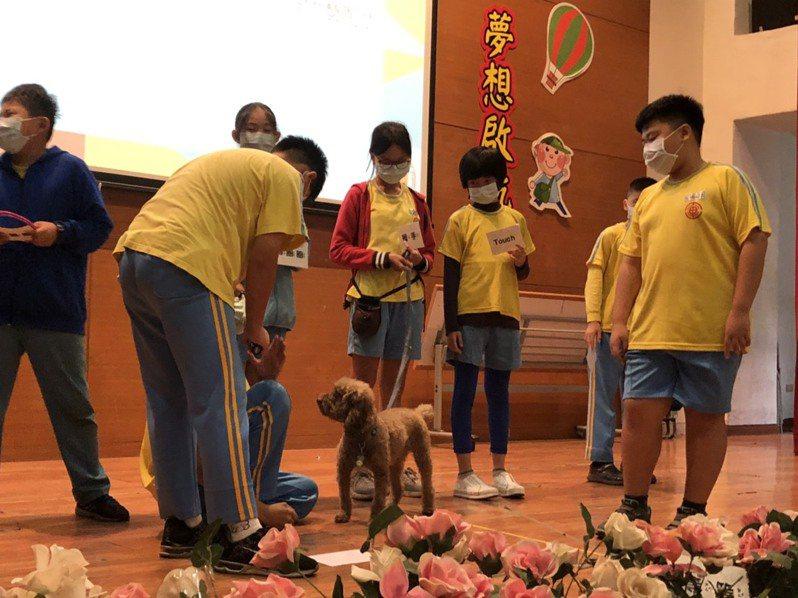 小講師邀請冋學上台與療癒犬接觸。圖/台中市政府提供