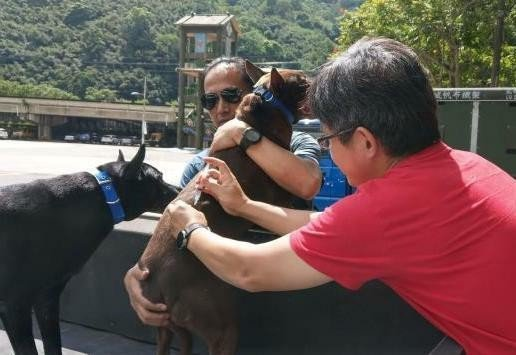 新竹縣家畜所11月16、17及19日上午10點至12點、下午1點至2點,將在橫山鄉辦理狂犬病巡迴預防注射及寵物登記。圖/新竹縣政府提供