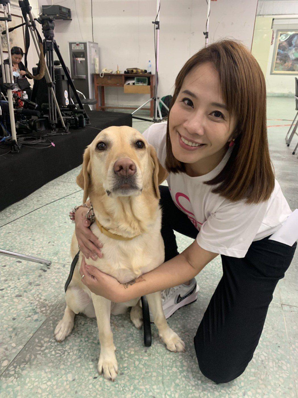 TVBS主播秦綾謙採訪盲人重建院時,與導盲犬合照。圖/TVBS提供