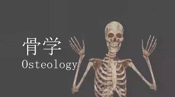 一位日本解剖老師,將自己投影成一具「人骨」動畫,以便講解骨骼構造。圖擷取自twitter