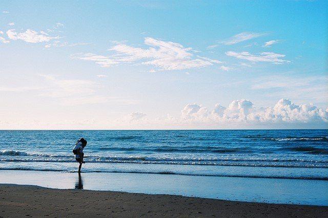 位在淡水漁人碼頭及淡水新市鎮之間的沙崙海灘,透過近幾年環保團體淨灘活動的努力,如...