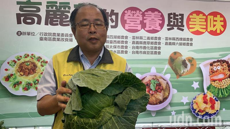 台南區農改場副場長羅正宗呼籲農民不要搶種高麗菜。記者吳淑玲/攝影