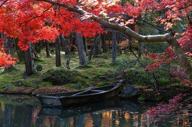 作家梁旅珠/日式庭園「苔」之美:綴有石雕小地藏的苔庭,是我的最愛