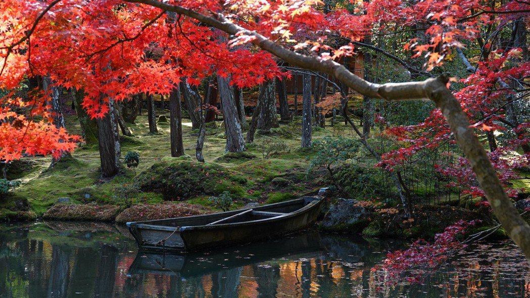 京都西山的西芳寺,因被多達120種苔類植物覆蓋而得「苔寺」之名,是我心目中京都最...