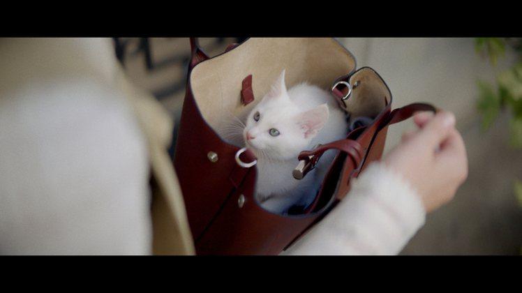 「非常巴黎」微電影的片段畫面,相當可愛。圖/LONGCHAMP提供