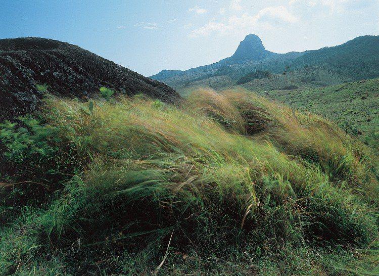 落山風在大尖山山腳下的原野吹出草浪。 圖/台灣國家公園2012年12月電子期刊