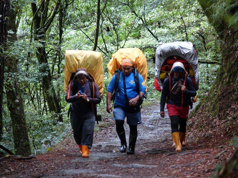 揹工推測最早始於清朝代,在高山上的原住民由平地人聘用,協助開路、領路還有修築步道等工作,當然還有搬運重物。記者邱德祥/攝影