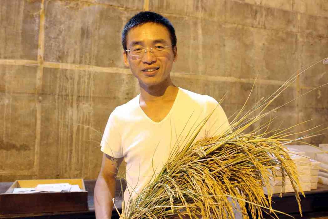 39歲青農莊登傑在彰化芬園鄉種植1甲多的無毒稻田,推廣理念。記者林敬家/攝影