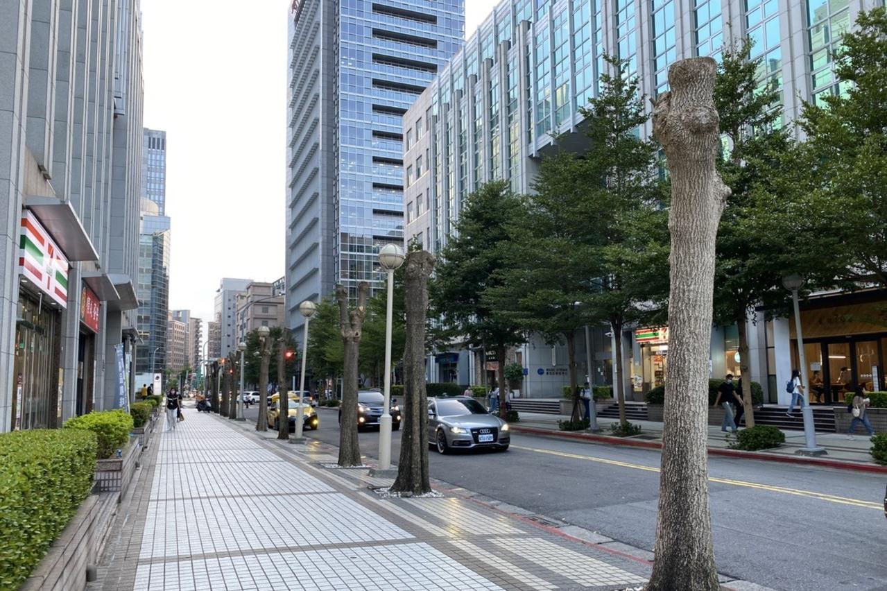 尋找最強樹上剪刀手 台北首辦樹木修剪武林大會