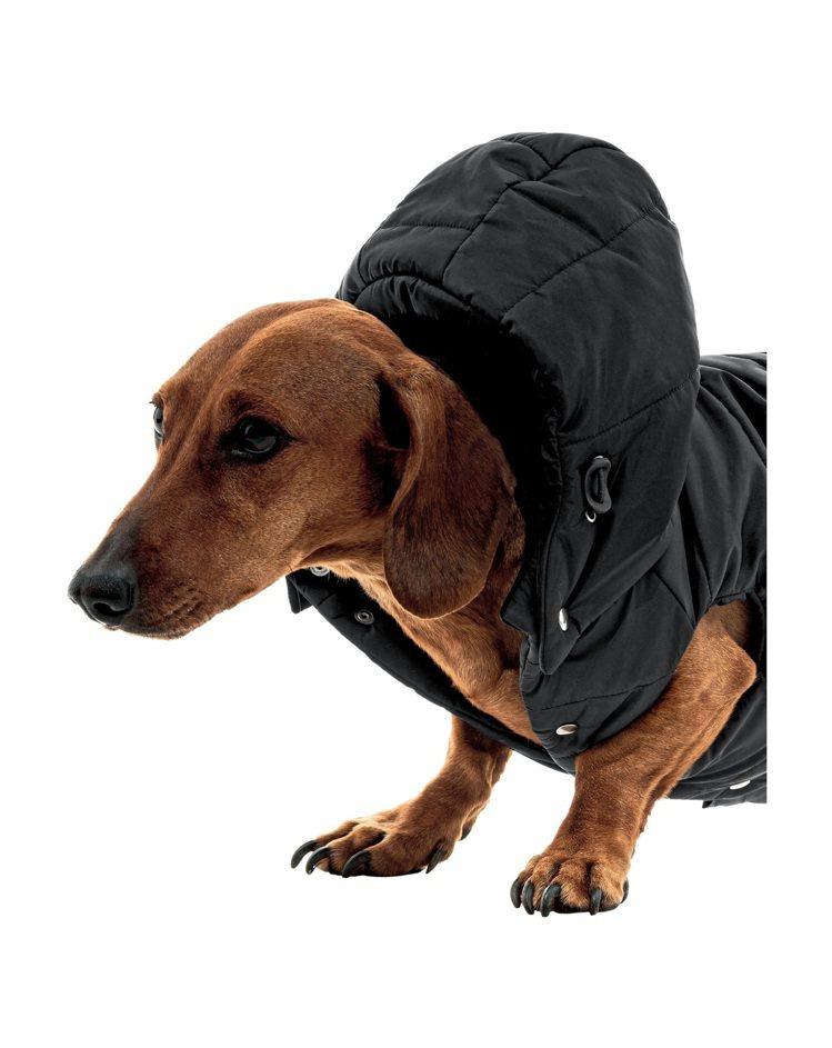尼龍寵物連帽羽絨外套,19,000元。圖/PRADA提供