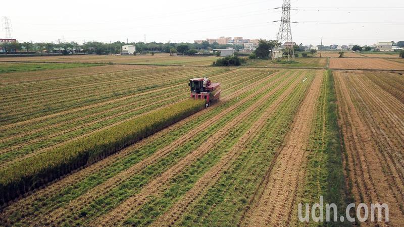 中央旱災應變中心決定嘉南一期稻區停灌休耕,目前已規劃補償方案。記者劉學聖/攝影