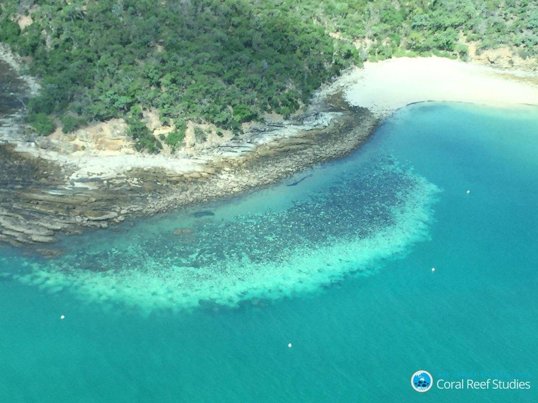 澳洲氣象局預估,12月將來臨的2021年夏天,澳洲大堡礁周邊的海域溫度將比往年上...