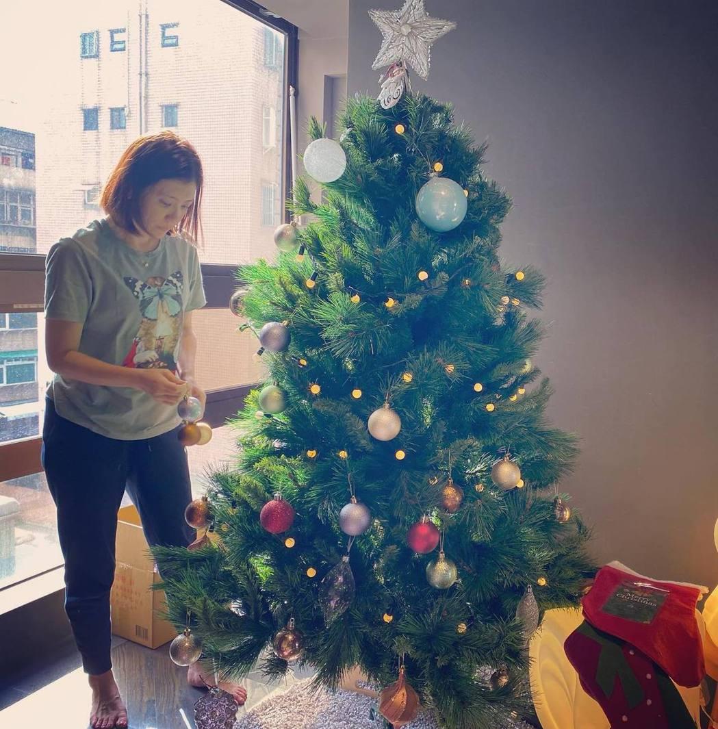 賈靜雯已在家中布置起耶誕樹。圖/摘自臉書