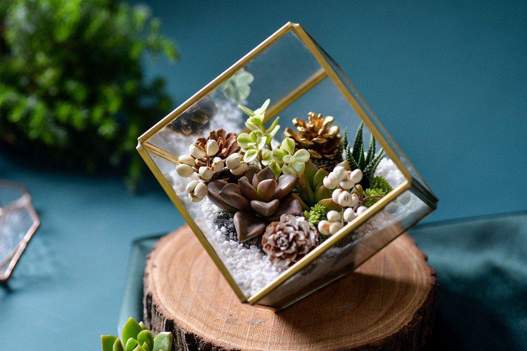 多肉珠寶盒。 圖/有肉Succulent & Gift提供