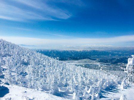 圖說:俯瞰至遠,群山陡坡綿延,山面盡皆樹冰儼然如百萬雄兵(照片/鄭輝楨 攝影)
